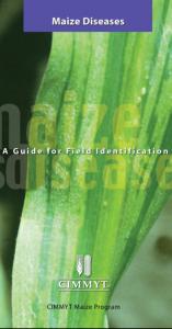 cimmyt-maize-diseases-guide