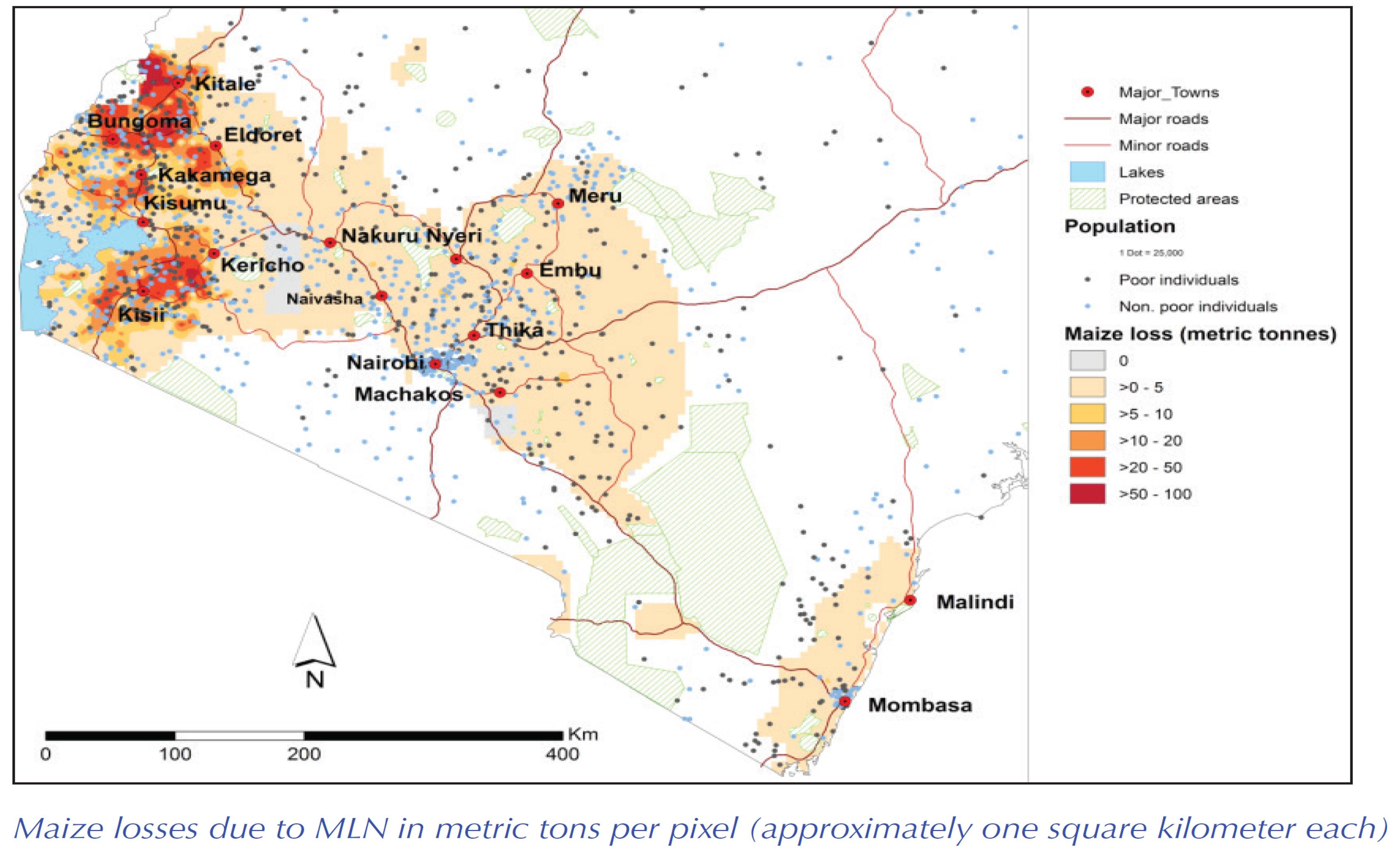 MLN Diseases portal Kenya MLN Distribution